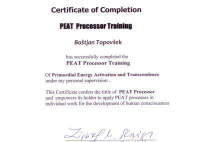 Peat Procesor